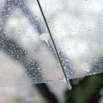 「雨水利用推進法」って何?雨水って家庭で利用できるの?